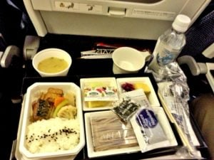 rice and vegetables on the plane