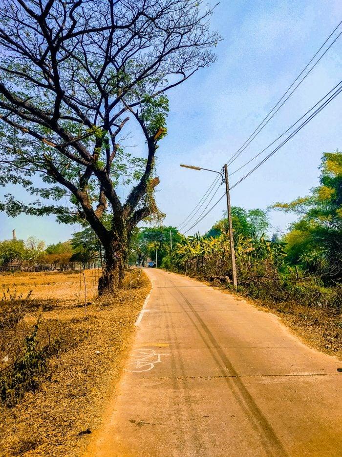 Bicycle path thru Sukhothai Thailand