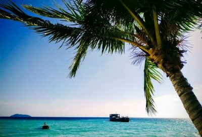 Palm trees and boat at Laem Tong Beach on Koh Phi Phi Island Thailand