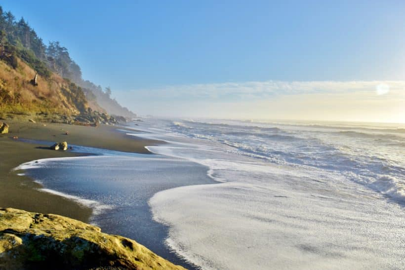 View of beach on the Olympic coast