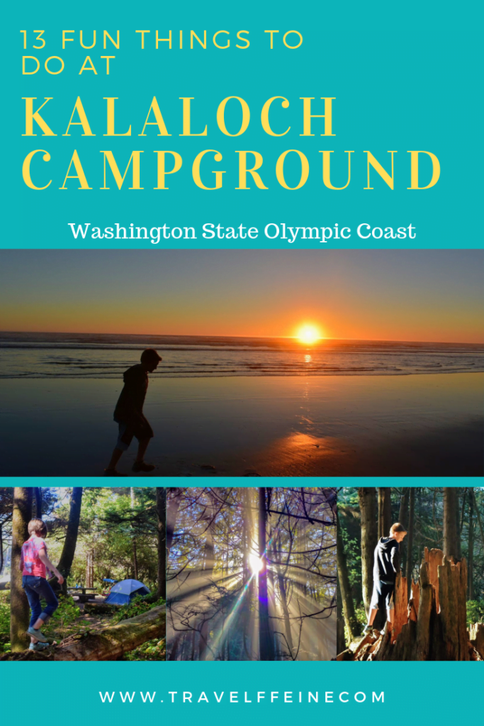 13 Things to Do at Kalaloch Campground