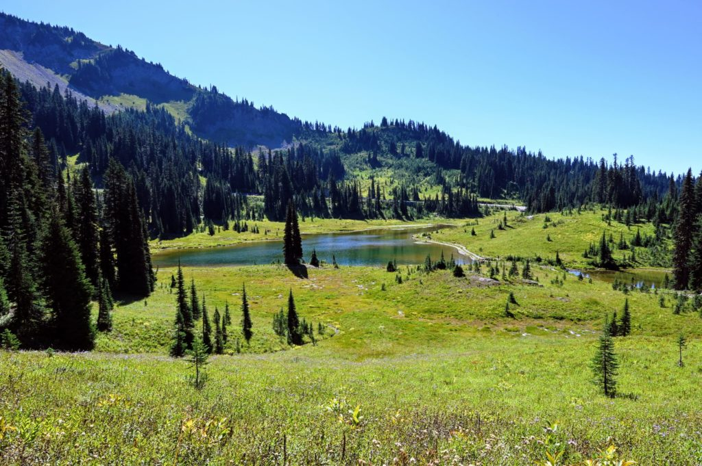 Tipsoo Lake start of Naches Peak Trail