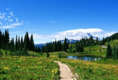 Views of Mount Rainier on the Naches Peak Trail