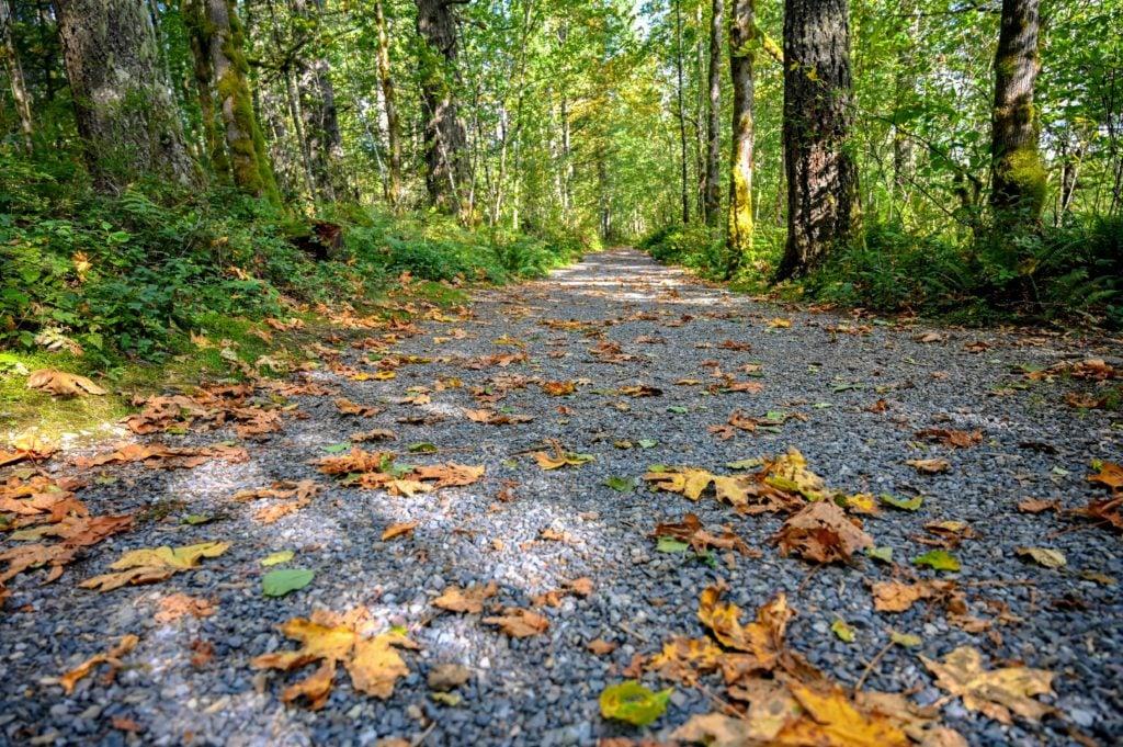 gravel path that leads around Deep Lake