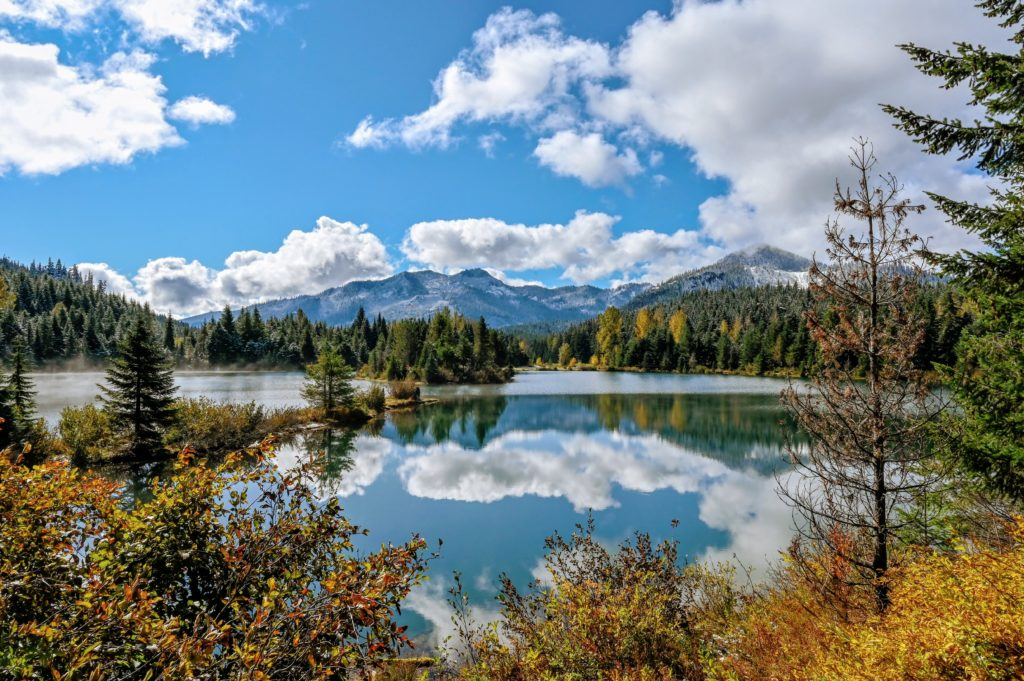 fall colors and reflections in the water of gold creek pond