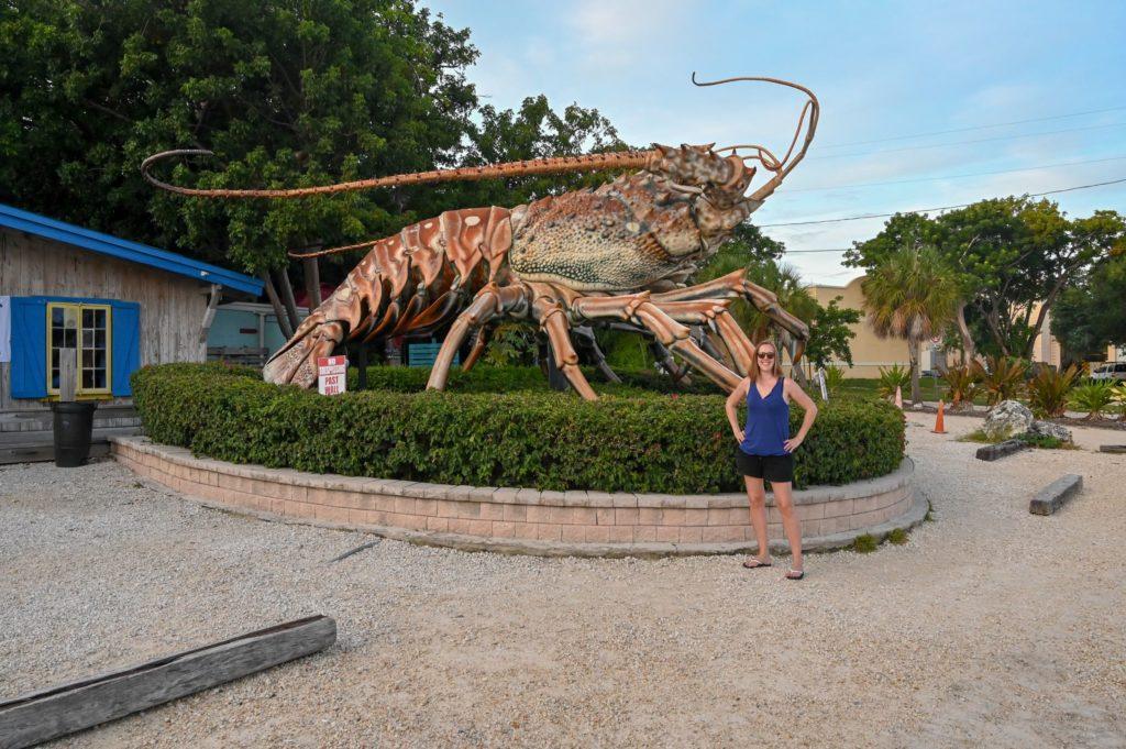 giant lobster in Islamorada Florida
