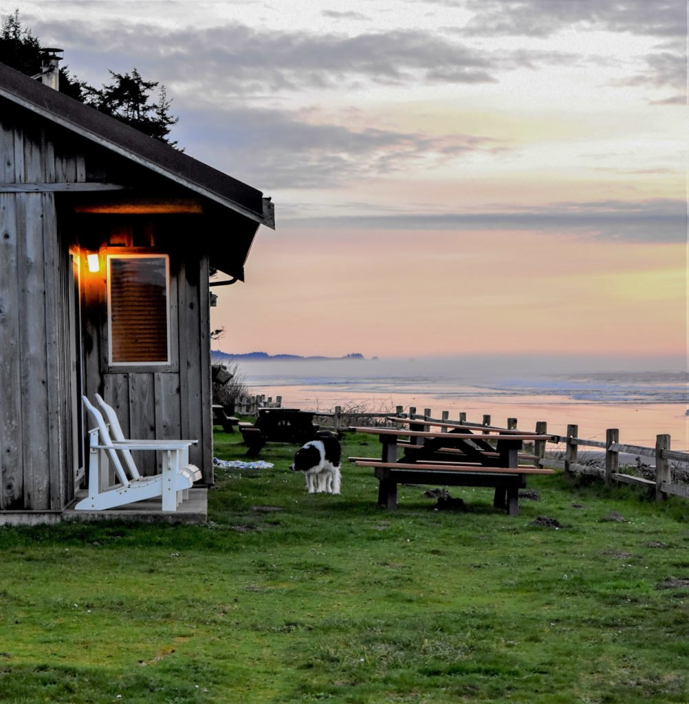 Kalaloch Lodge Bluff Cabins