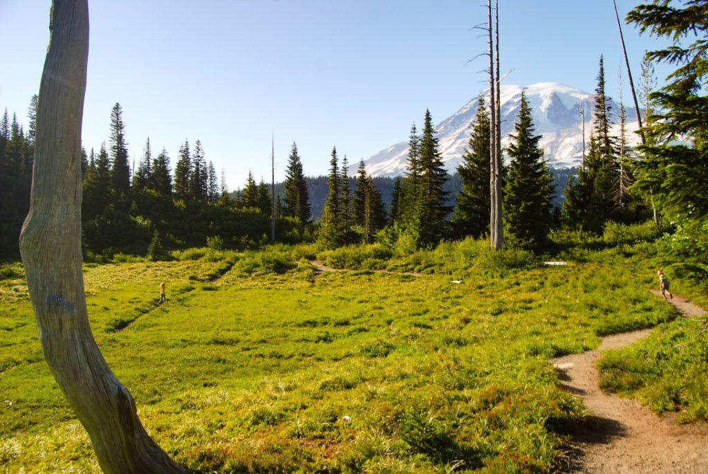 Mt Rainier hike