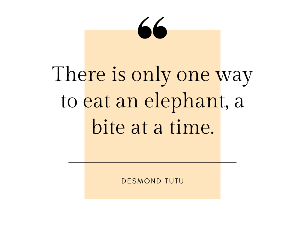 only one way to eat an elephant quote