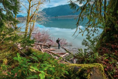 Lake Quinault lake
