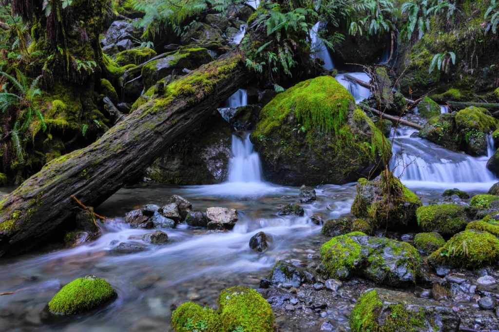 small waterfalls with a stream and mossy rocks