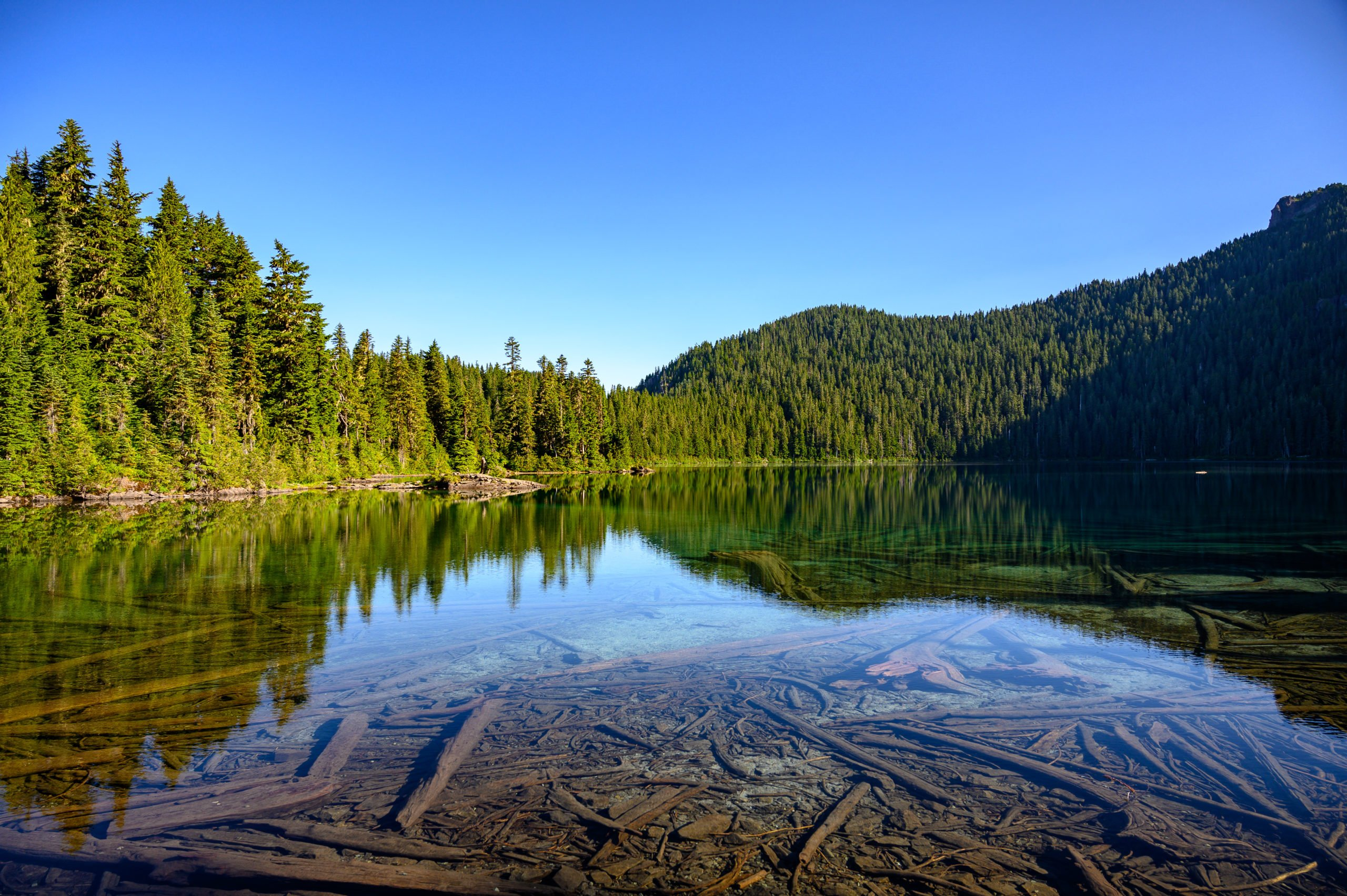 Mowich Lake in the morning.
