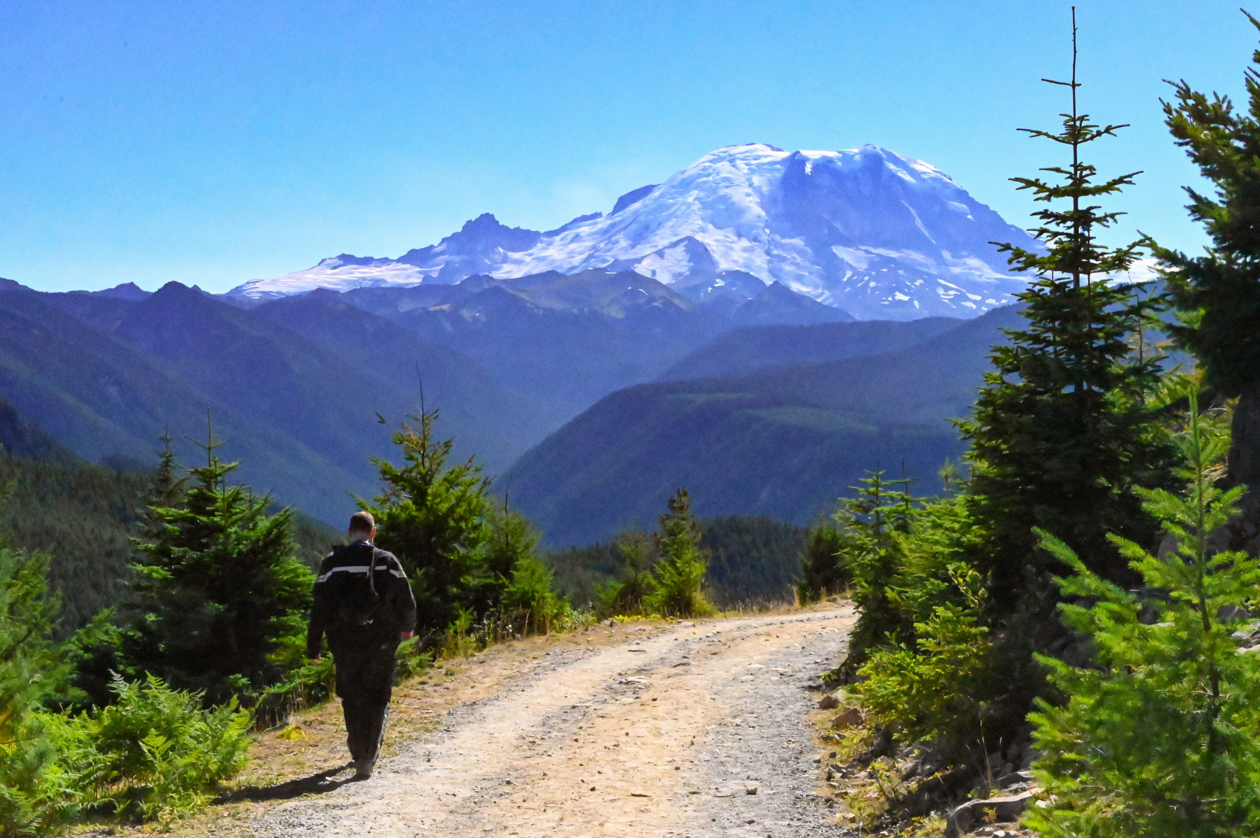 A hiker walking down a road toward Mt Rainier