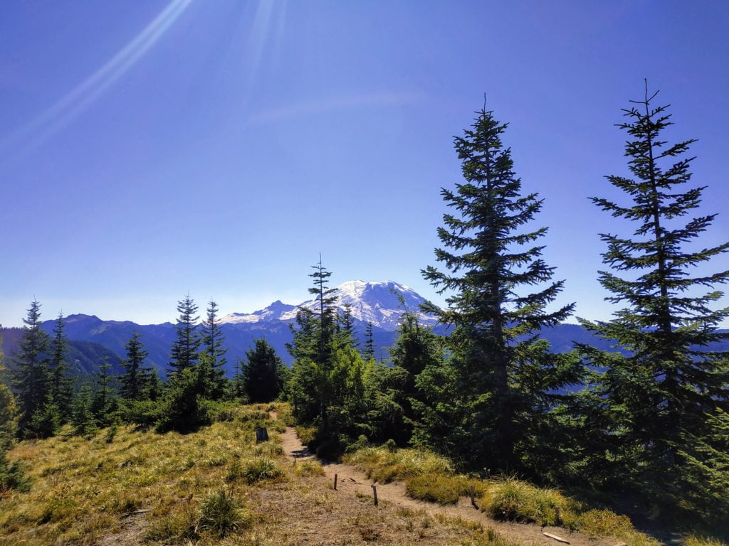 view of a trail and mount rainier