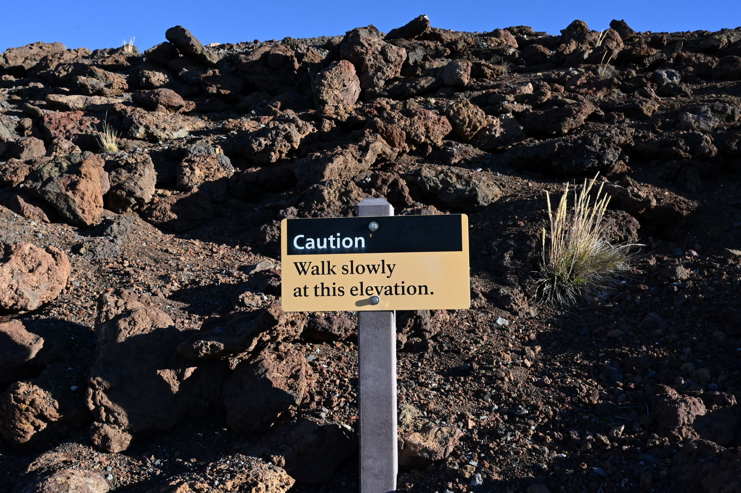 elevation sickness sign