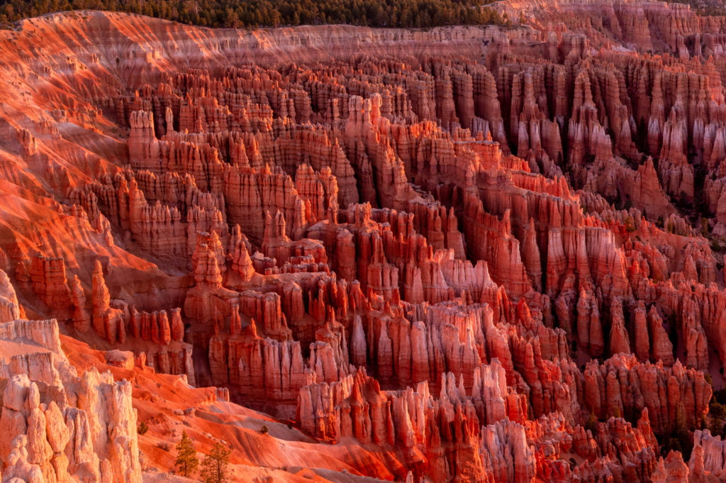 Hoodoos and Spires at Bryce Canyon