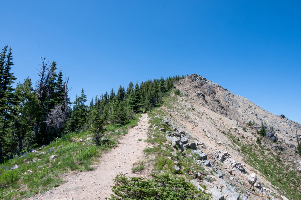 Dege Peak Summit trail