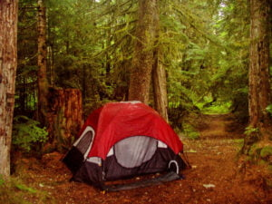 Wenger 4-Person Dome Tent